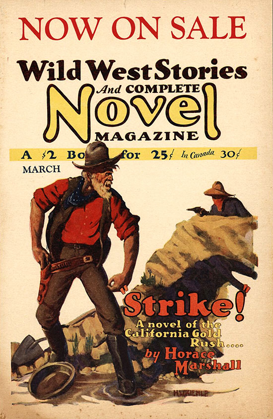 A poster for Wild West Stories and Complete Novel Magazine